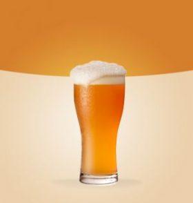 Tendo como base o estilo Lager, esta cerveja feita com lúpulo Motueka desenvolvido na Nova Zelândia, tem como sua principal característica o aroma cítrico, limão, lima e frutas tropicais, cerveja de corpo leve e extremamente refrescante.  Álcool: 5,0%  |  Amargor: 18,0 IBU